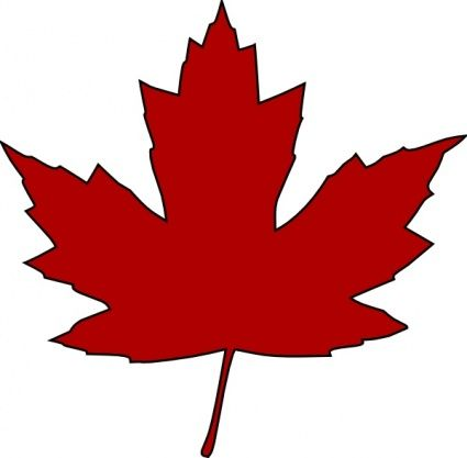 Maple Leaf Outline Vector.