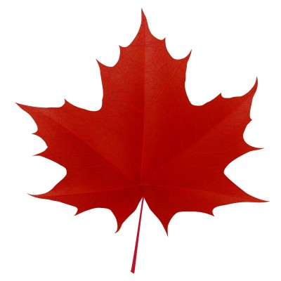 Free Canadian Maple Leaf, Download Free Clip Art, Free Clip Art on.