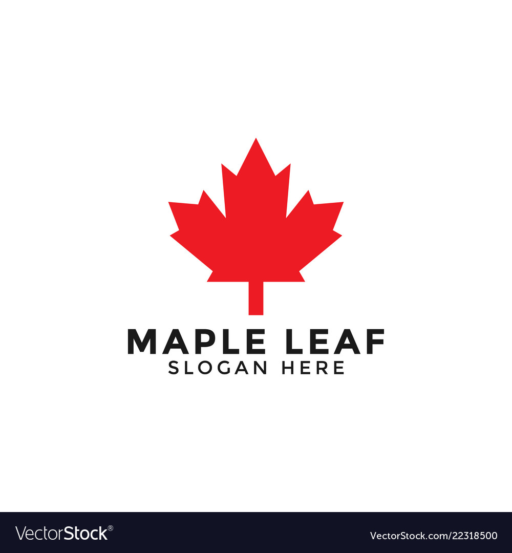 Red maple leaf logo icon design template.