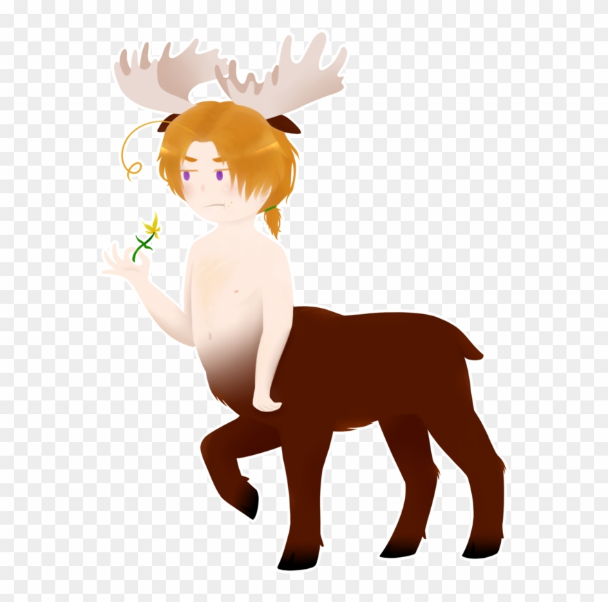 Moose Clipart Animal Canada.