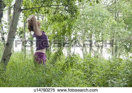 Stock Image of Woman looking upward in grove of poplar trees.