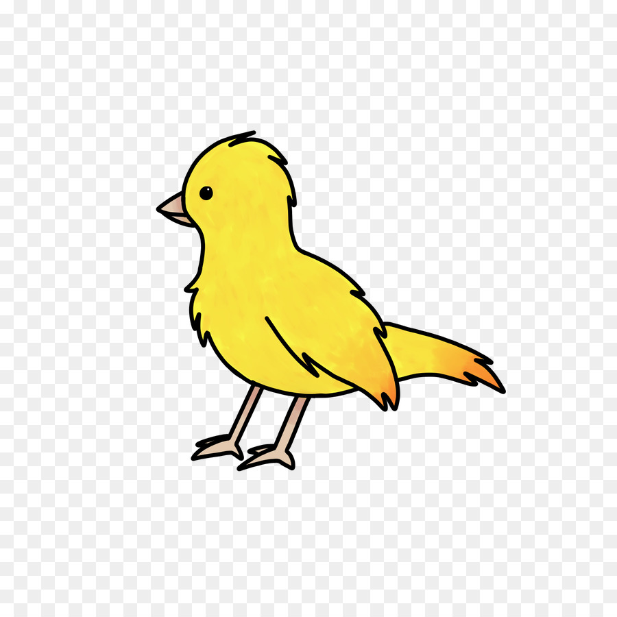 Bird Clipart png download.