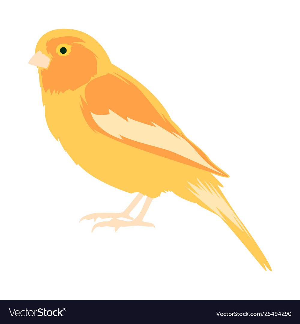 Animal clip art a yellow canary.