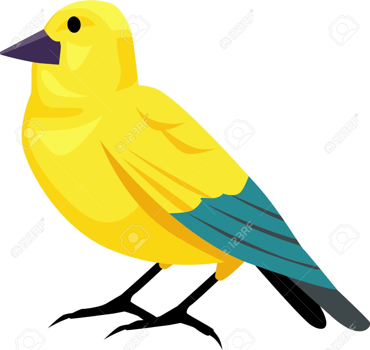 Yellow Canary Bird Vector Illustrated Royalty Free Cliparts.