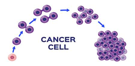 12,134 Cancer Cells Cliparts, Stock Vector And Royalty Free Cancer.