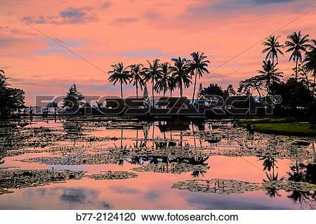 Stock Photography of Indonesia, Eastern Bali, view of the lotus.