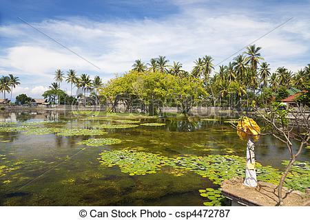 Picture of Countryside at Candidasa, Bali, Indonesia.