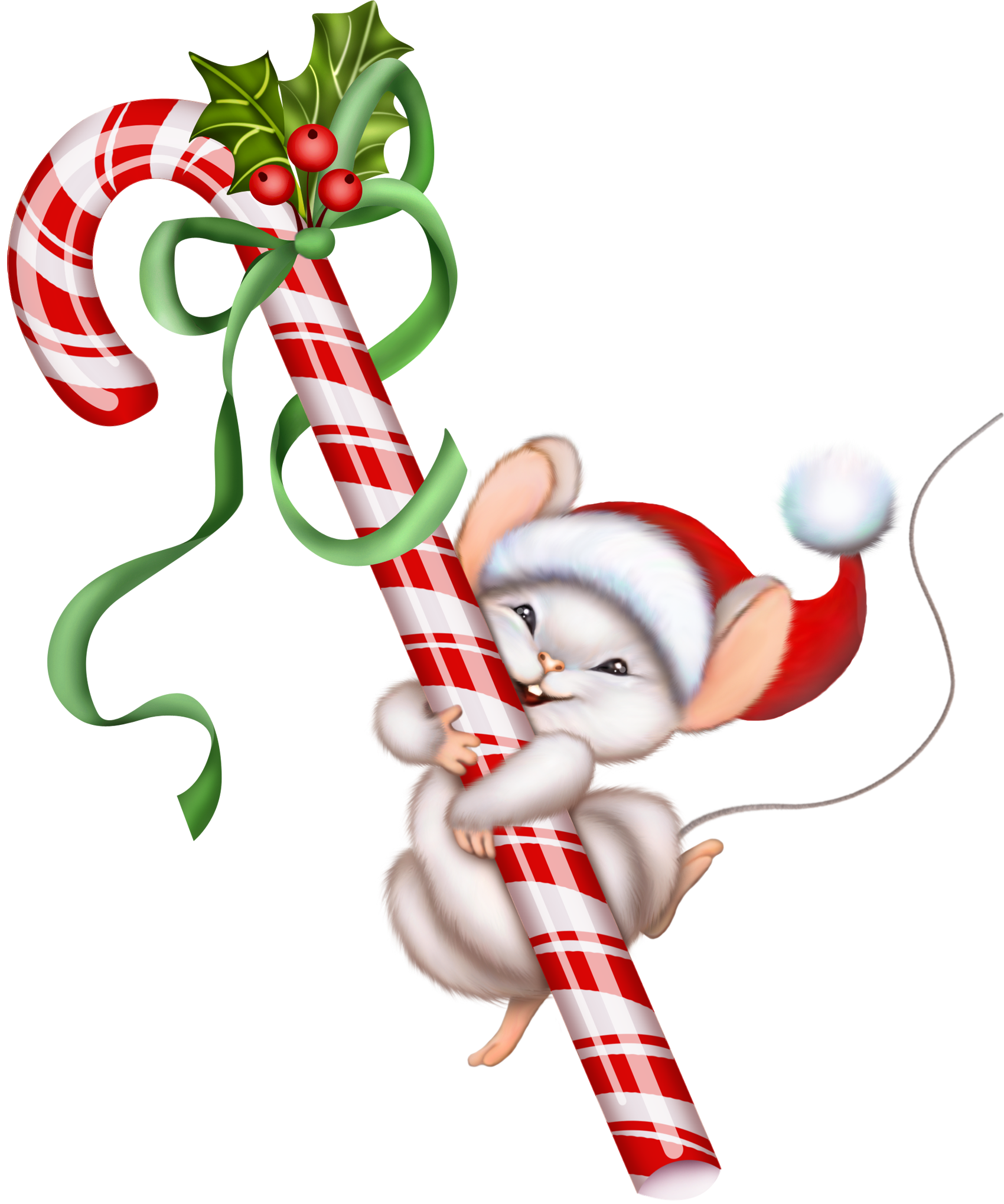 Candy canes clipart #11
