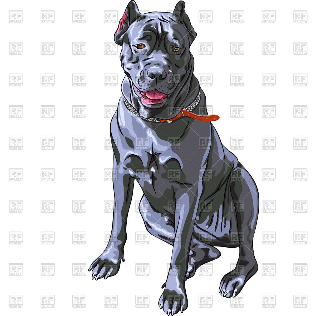 Head of dog Cane Corso flat icon Vector Image #65931.