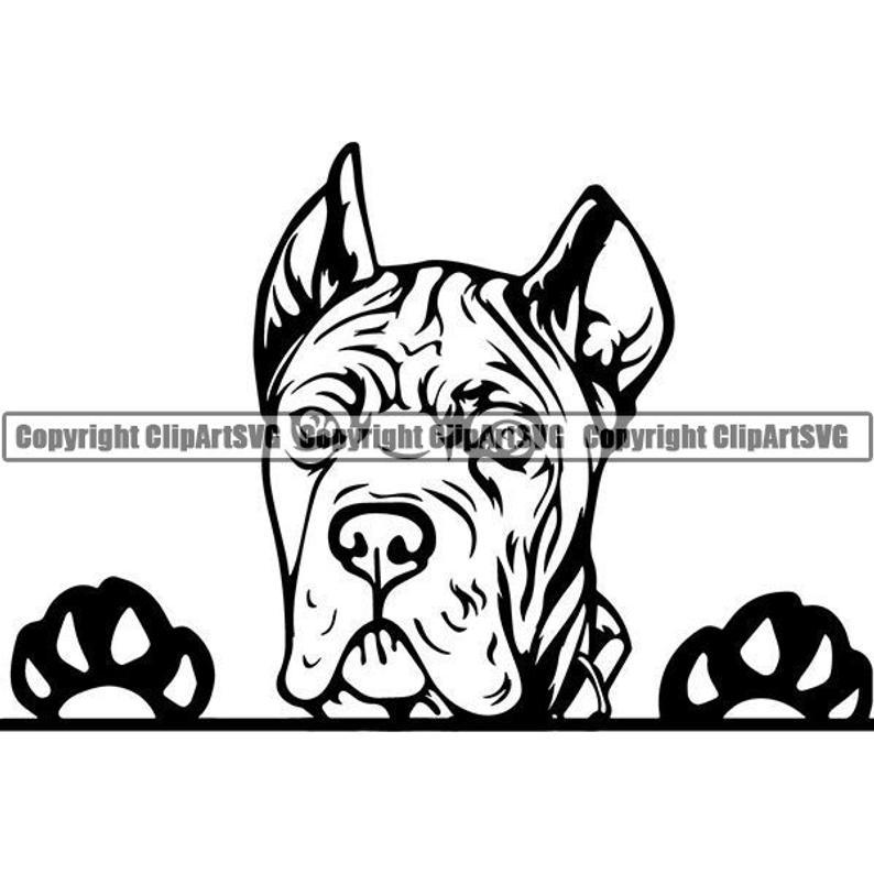 Cane Corso #10 Peeking Dog Breed Italian Mastiff Animal Pet Hound Pedigree  Purebred Puppy Logo .SVG .PNG Clipart Vector Cricut Cut Cutting.