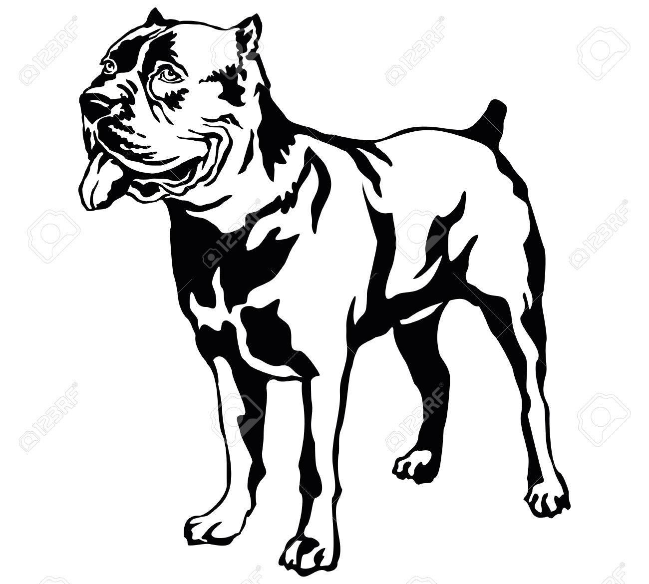 Decorative portrait of standing in profile dog Cane corso italiano...