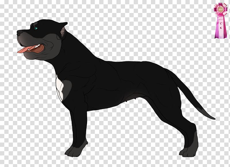 Cane Corso American Staffordshire Terrier Cat Collar Dog.