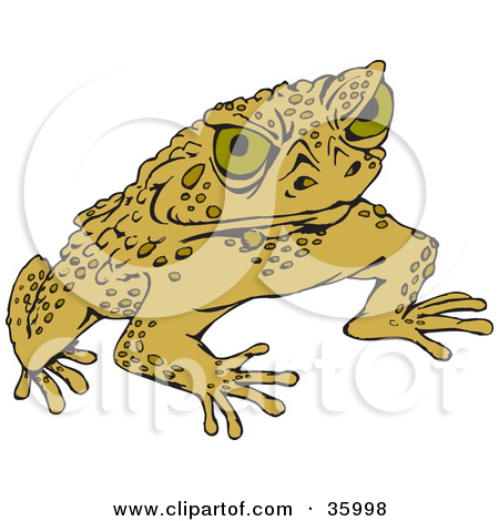 7+ Cane Toad Clipart.