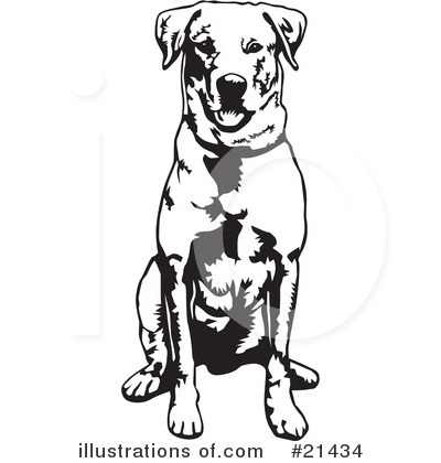 Canines clipart #15