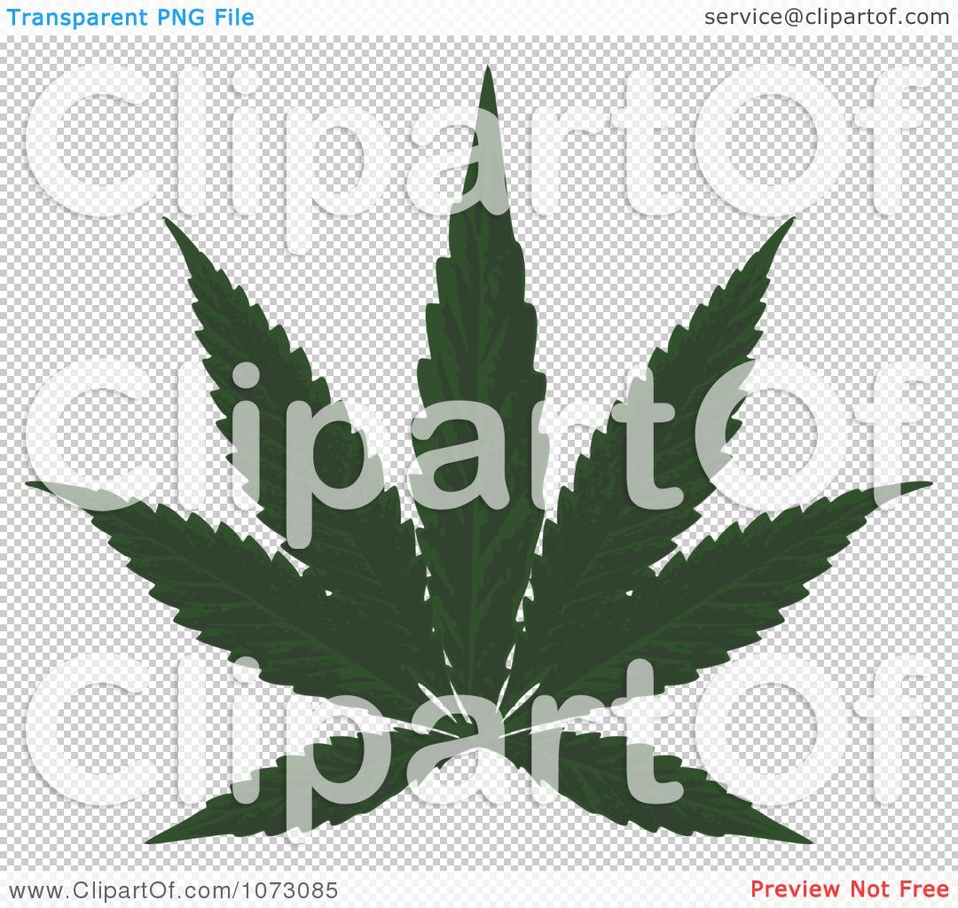 Clipart Medical Marijuana Cannabis Leaf.