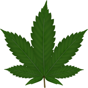 Cannabis Leaf Clip Art at Clker.com.