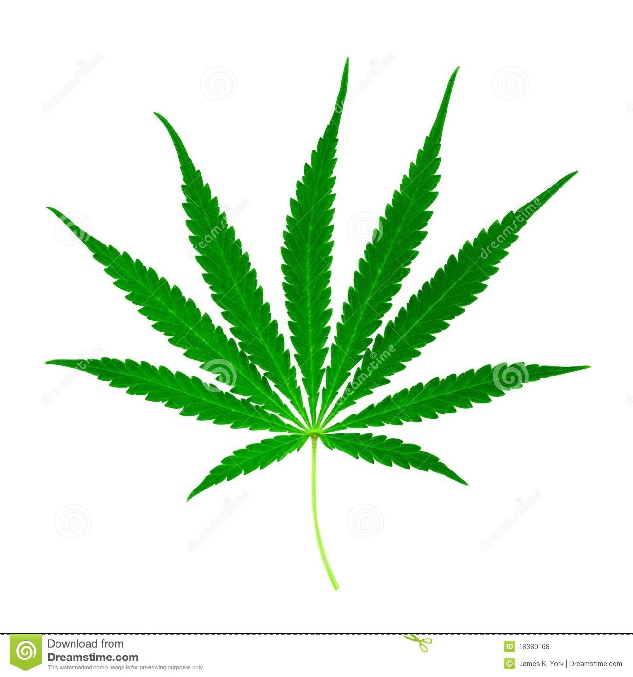 Cannabis Marijuana Leaf Clipart.