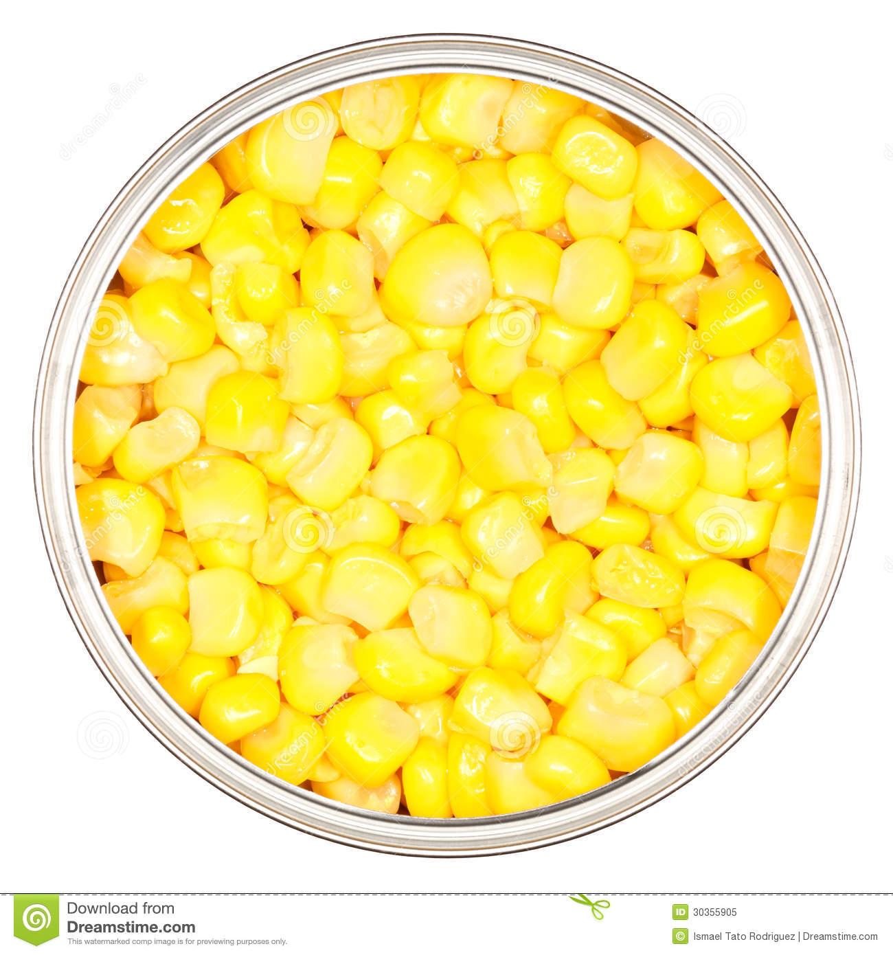 Sweet Corn Royalty Free Stock Photo.
