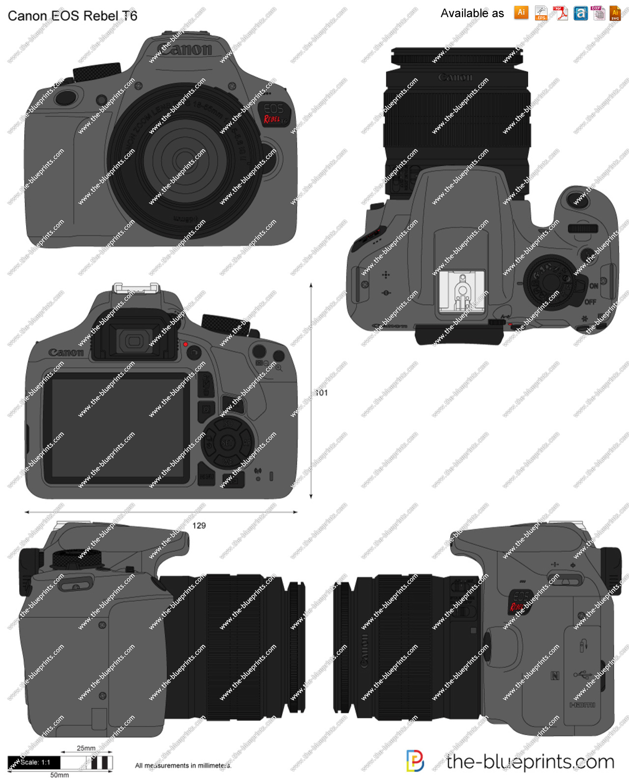 Canon EOS Rebel T6 vector drawing.