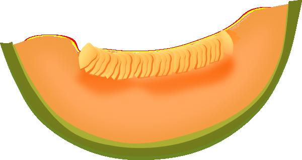 Cantaloupe Clipart.