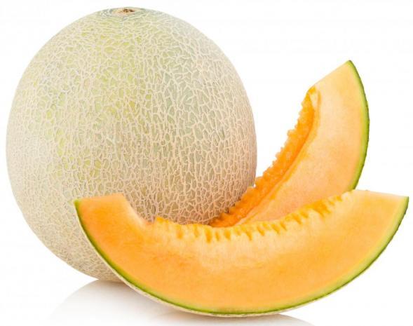 Cantaloupe clipart free.