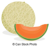 Cantaloupe Illustrations and Clipart. 326 Cantaloupe royalty free.