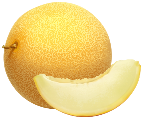 Cantaloupe PNG Clipart.