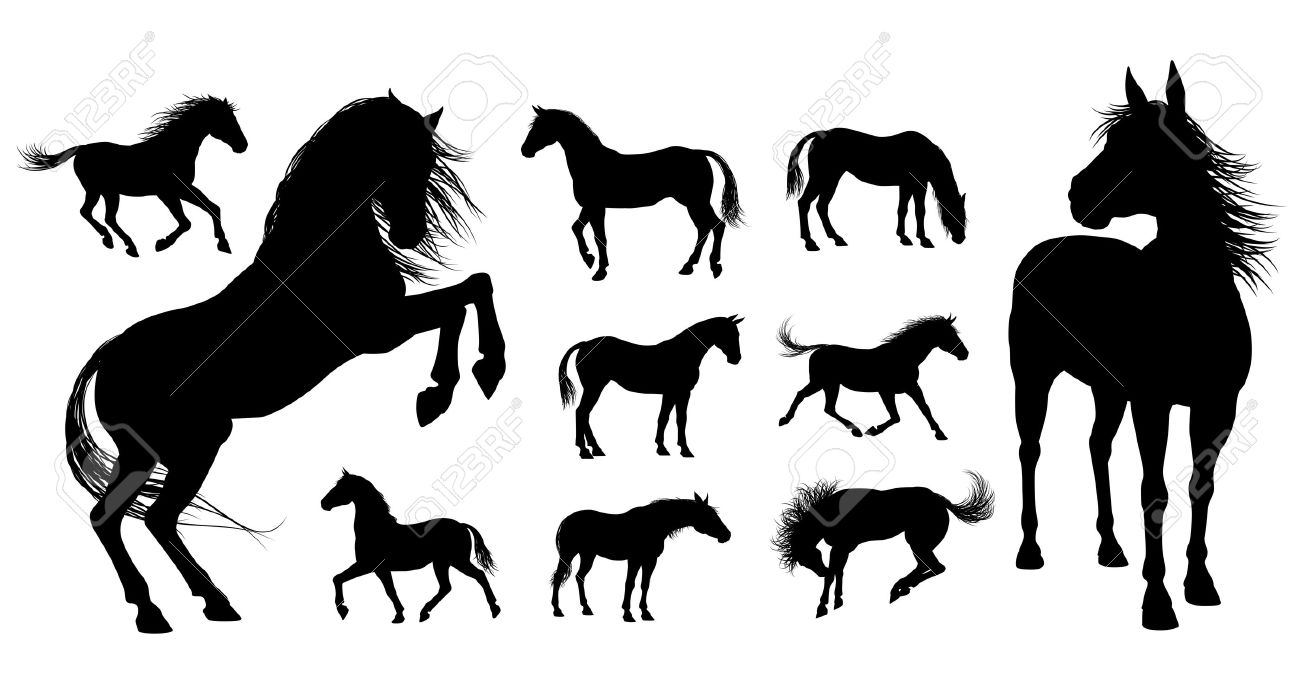 183 Canter Stock Vector Illustration And Royalty Free Canter Clipart.
