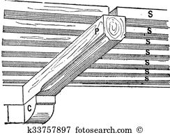 Cantilever Clip Art and Illustration. 28 cantilever clipart vector.