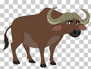 141 african Buffalo PNG cliparts for free download.