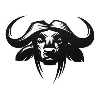 cape buffalo drawing.