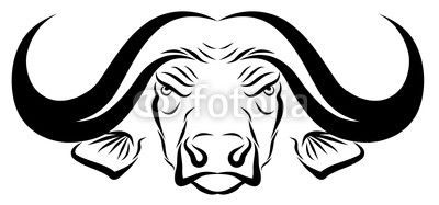 Animals For > African Buffalo Head Drawing.