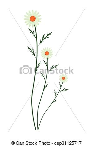 Vector Clip Art of Green Daisy Blossoms on A White Background.
