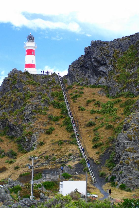 Cape Palliser lighthouse, New Zealand.