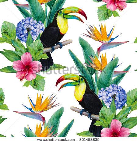 "plumbago Flower"" Stock Photos, Royalty."