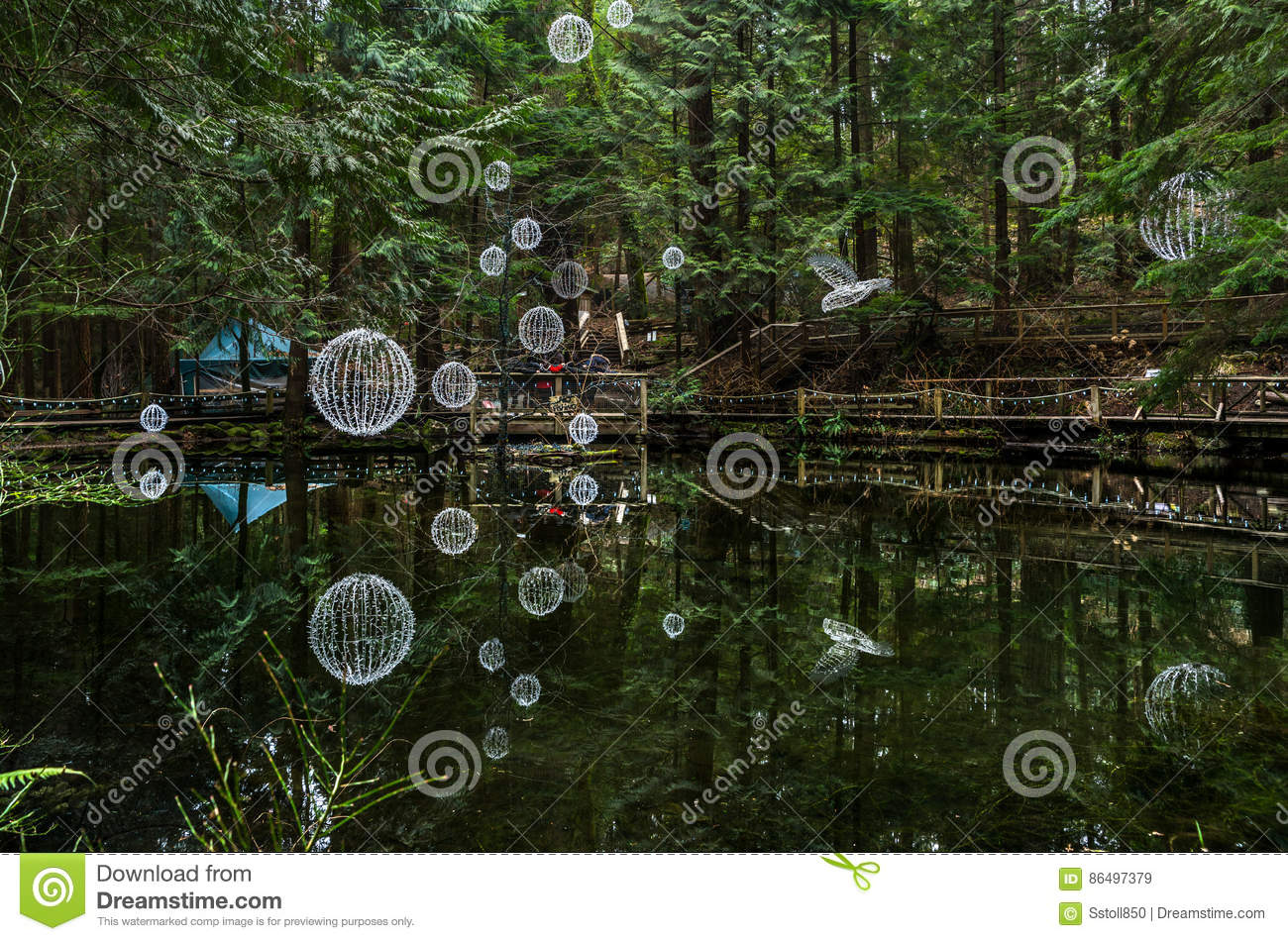 Capilano Suspension Bridge Park, Vancouver, Canada Editorial Stock.