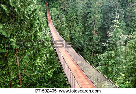 Stock Image of Capilano suspension bridge. Vancouver. British.