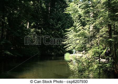 Stock Photography of Capilano Suspension Bridge, Vancouver, Canada.