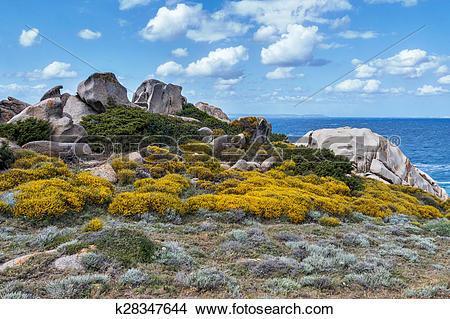 Stock Photo of The coastline at Capo Testa Sardinia k28347644.