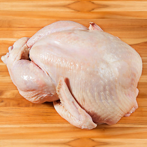 Capon Chicken (Rooster Meat).