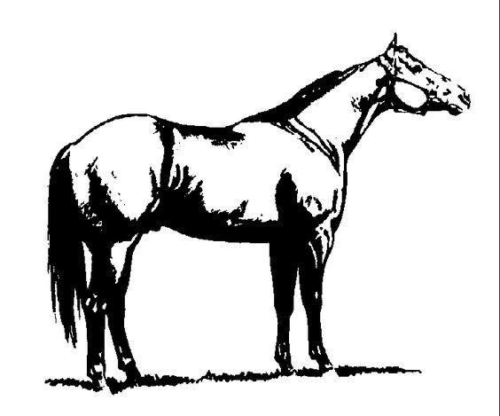clip art horses.