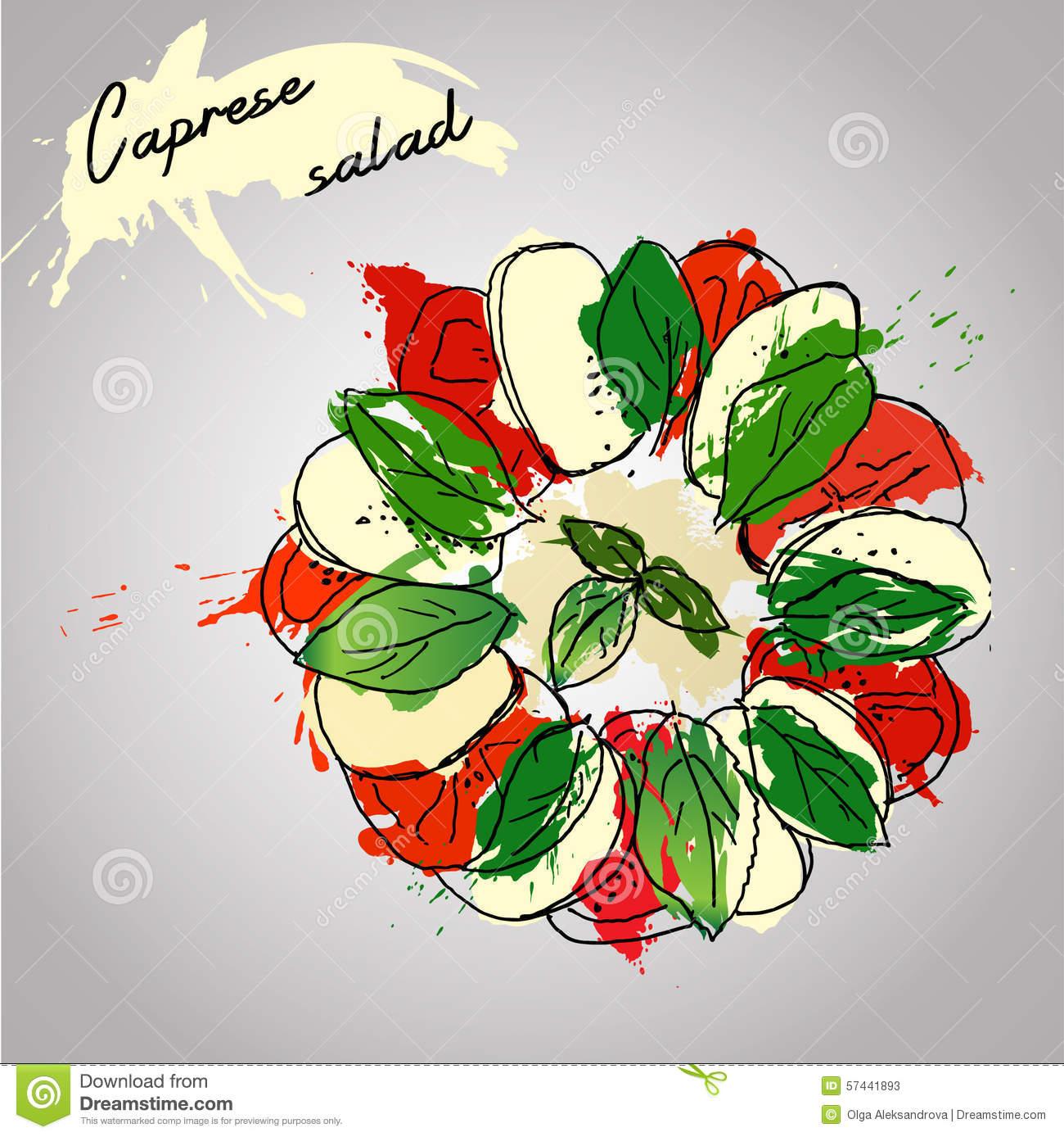 Caprese Salad Stock Illustrations.