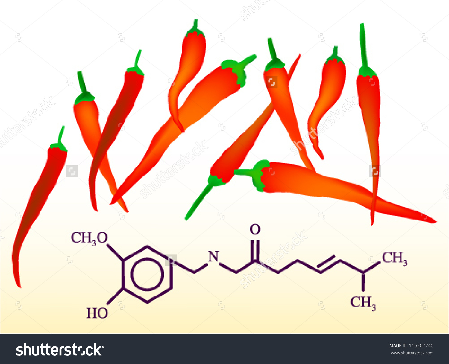 Capsaicin Chili Peppers Chemical Structure Formula Stock Vector.