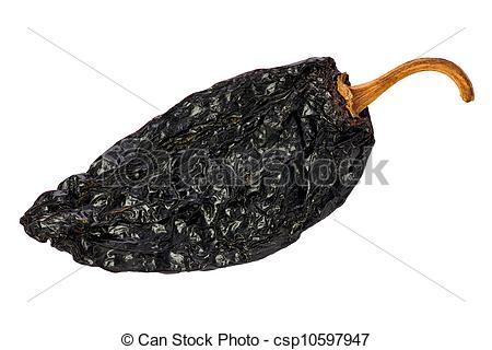Stock Photo of Ancho Chili (Capsicum annuum).