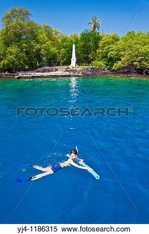 Stock Image of snorkelers and Captain Cook Monument, Kealakekua.
