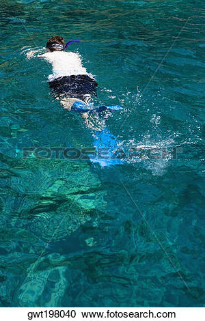 Stock Photography of Man snorkeling in the sea, Captain Cook's.