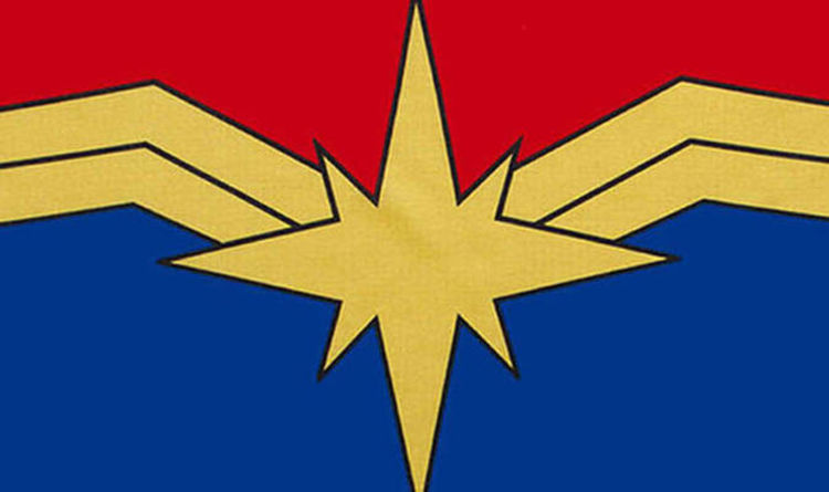 Captain Marvel: What is the symbol at the end of Avengers Infinity.