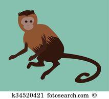 Capuchin Clip Art Vector Graphics. 34 capuchin EPS clipart vector.