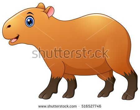 Capybara Stock Images, Royalty.