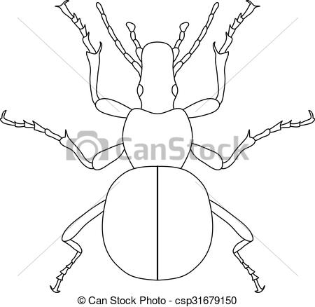 Clipart Vector of ground beetle bug. Carabidae. Sketch of ground.